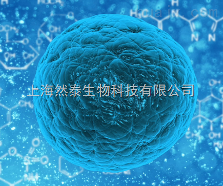 Applied StemCell Inc.ASC